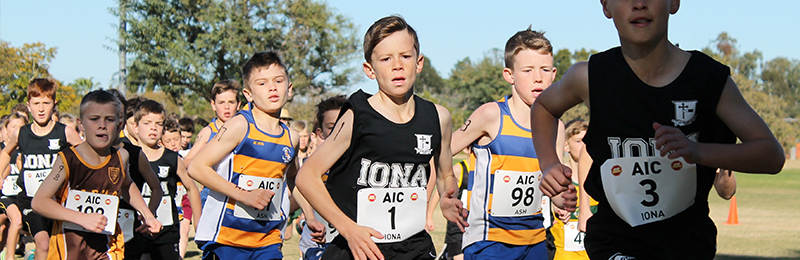 IONA COLLEGE DOMINATES AIC CROSS COUNTRY
